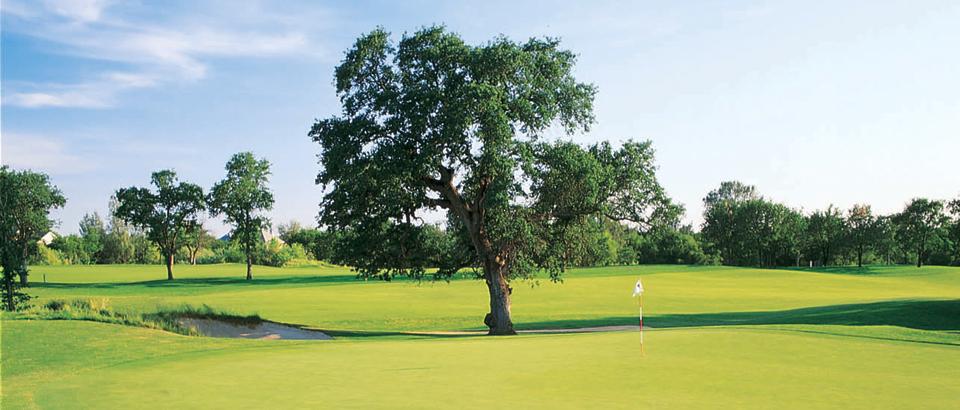 ACI Golf Classic Event